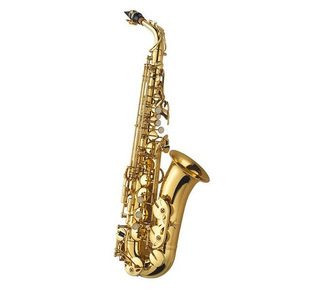 Saxofone Alto AL500 – J.Michael